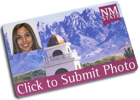 Submit Your Photo Online
